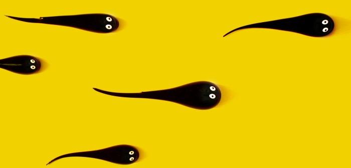 Schnell schwanger werden: Tipp #9 - Spermienqualität – ausgezeichnet!