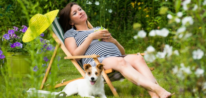 33. Schwangerschaftswoche (SSW)