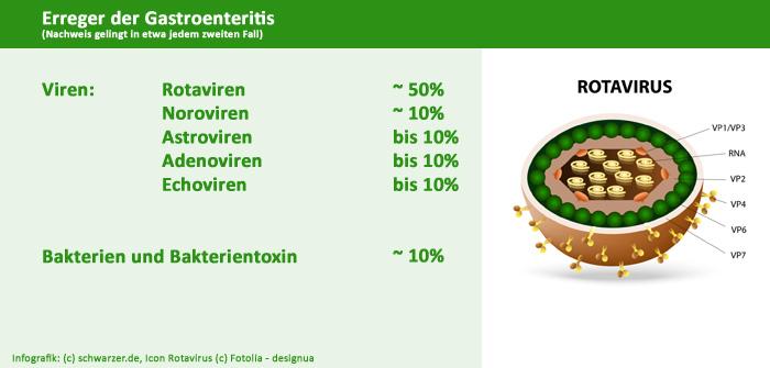 Infografik: Erreger-der Magen-Darm-Grippe bzw. Magen-Darm-Entzündung (Gastroenteritis)