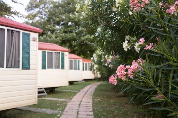Eine gute Mischung aus Ferienwohnung und Camping bieten die sogenannten Mobile-Homes & Chalets. Bei der Vermittlung ist das Verkehrsamt Biscarosse gerne behilflich. (#4)